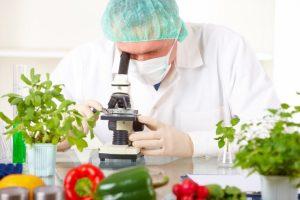 analisi alimentarii